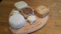 A selection of home-made vegan cheeses